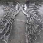 angel wings steel sculpture at sculptura