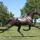 horse-trotting