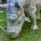 Rhino_CU