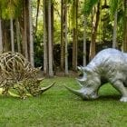 Rhinos_FacingOff