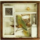 Untitled (for Stephanie) - Joseph Cornell