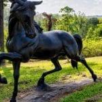 Stallion - Sculptures by Sculptura